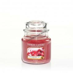 Moyenne jarre cranberry ice