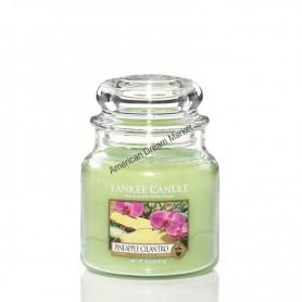 Moyenne jarre pineapple cilantro