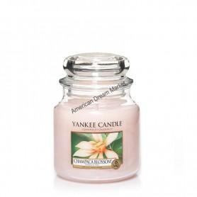 Moyenne jarre champaca blossom