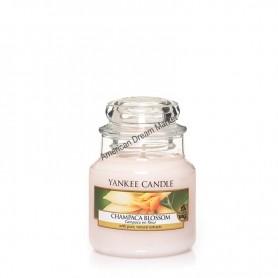 Petite jarre champaca blossom