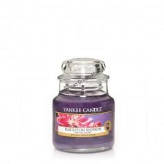 Petite jarre black plum blossom