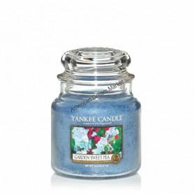 Moyenne jarre garden sweet pea