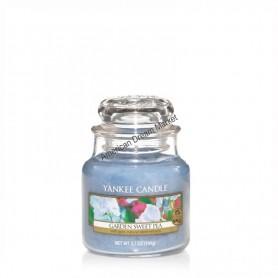 Petite jarre garden sweet pea
