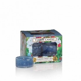 Lumignons garden sweet pea