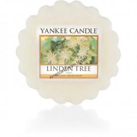 Petite jarre linden tree