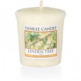 Tartelette linden tree