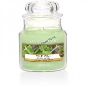 Grande jarre wild mint