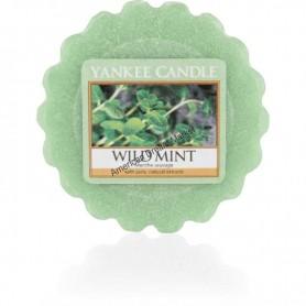 Petite jarre wild mint