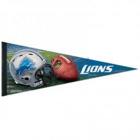 Roll up detroit lions