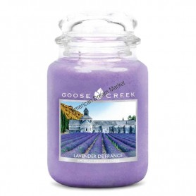 GC Grande jarre lavender de france