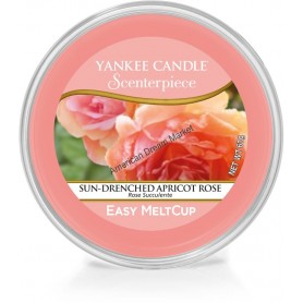 Easy melt cup sun drenched apricot rose