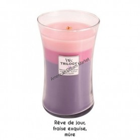 WoodWick trilogy grande wild berry smoothie