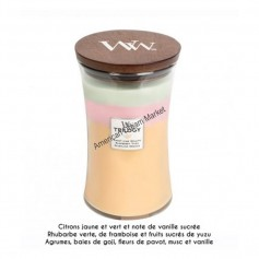 WoodWick trilogy grande summer sweets