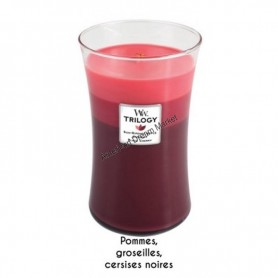 WoodWick trilogy grande summer fruits