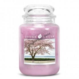 GC Grande jarre cherry blossom