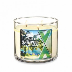 BBW bougie citrus and sandalwood