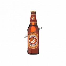 Bière brooklyn pumpkin ale