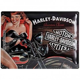 Plaque harley davidson america classic