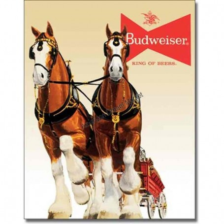 Bud clydesdale team