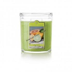 CC grande jarre citrus woods
