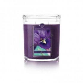 CC grande jarre wild iris