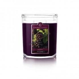 CC grande jarre mulberry