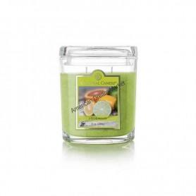 CC moyenne jarre citrus woods