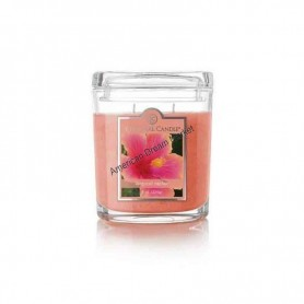 CC moyenne jarre tropical nectar
