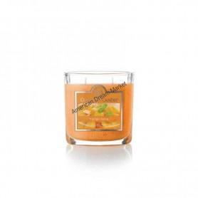 CC petite jarre mango salsa