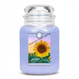 GC Grande jarre sunflower daydream