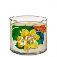 BBW bougie rainforest gardenia