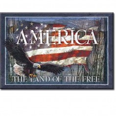 Magnet america land of free