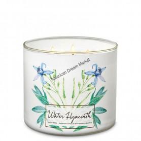 BBW bougie water hyacinth