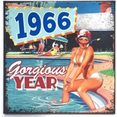 Magnet vintage 1966