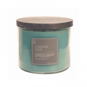 VC natural n°4 coastal kale