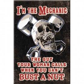 Magnet mechanic