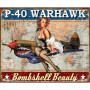 Plaque metal warhawk
