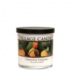 VC Tumbler PM clementine evergreen
