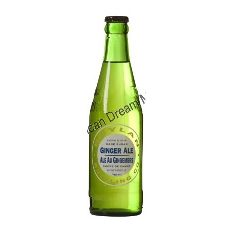 GINGER ALE au Gingembre