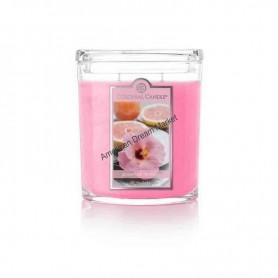 CC grande jarre grapefruit hibiscus