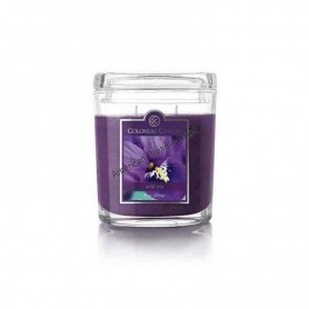 CC moyenne jarre wild iris