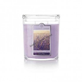 CC moyenne jarre french lavender