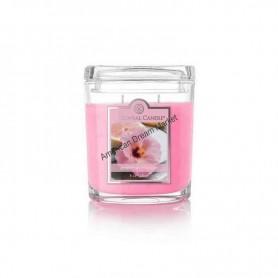CC moyenne jarre grapefruit hibiscus