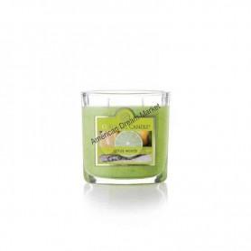 CC petite jarre citrus woods