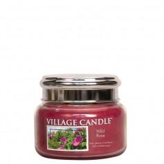 VC Petite jarre wild rose