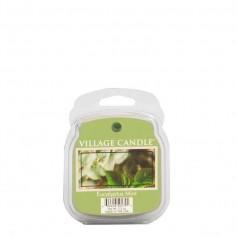 VC Cire eucalyptus mint