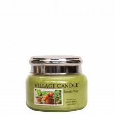 VC Petite jarre tomato vine