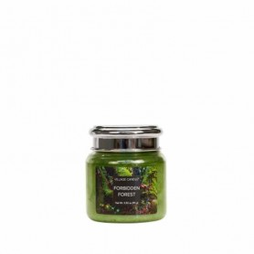 VC Mini jarre forbidden forest