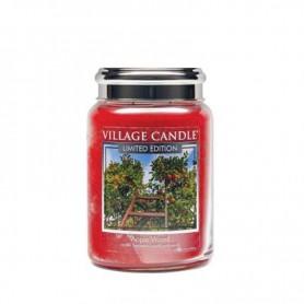 VC Grande jarre apple wood