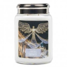 VC Grande jarre angel wings